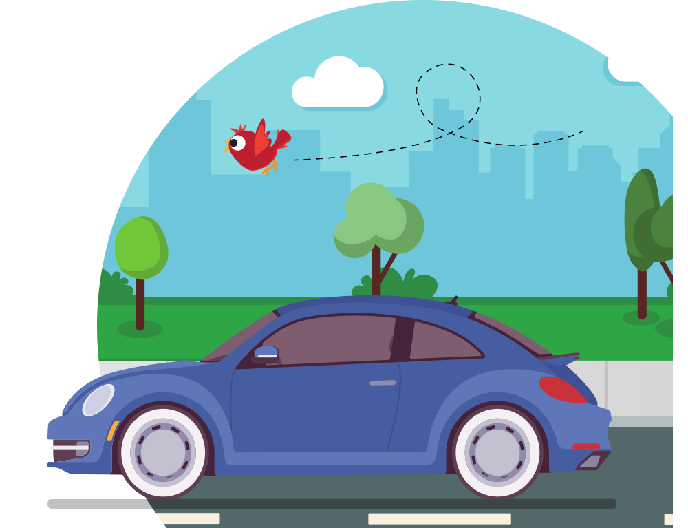 We compare car insurance quotes from 10+ companies
